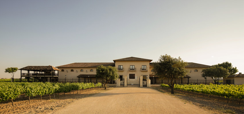 Wine Tourism | Discover the magic of wine in our winery of La Roda