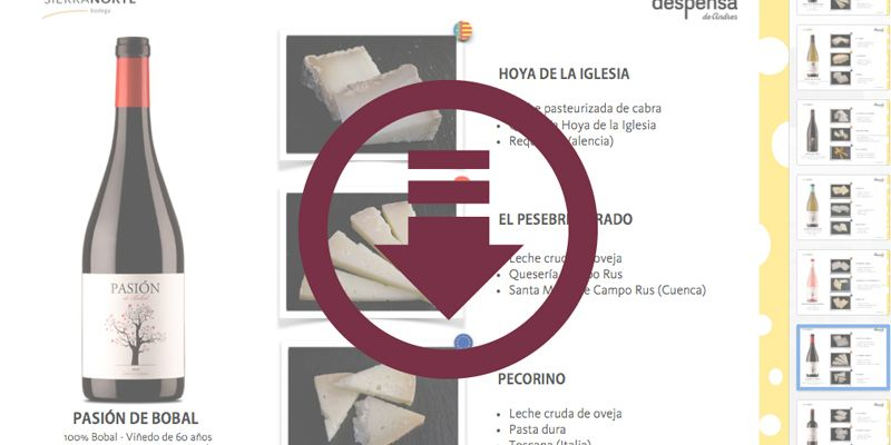 Descarga gratis la 1ª Guía de Maridajes 'Vinos y Quesos' :)